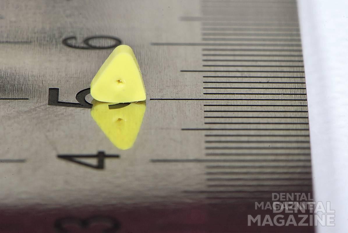Рис. 25. Масштаб съемки 1:1, F32, глубина резкости в пределах 10 мм.